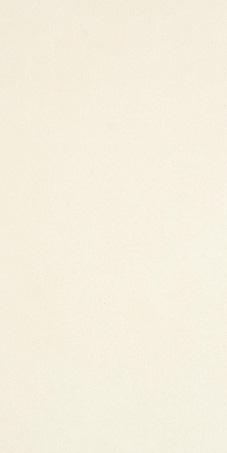 Villeroy & Boch Mood Line beige VB-1571 NG10 Wandfliese 60x30 matt