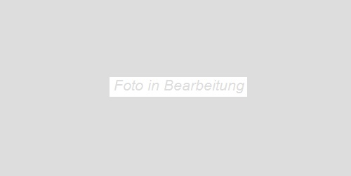 Agrob Buchtal Inside-Out zementgrau AB-433627 Bodenfliese 30x60 eben, vergütet R9
