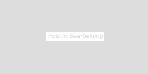 Villeroy & Boch BiancoNero schwarz VB-1581 BW920 Dekor 30x60 glänzend