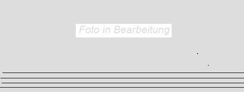 Agrob Buchtal Twin mittelbraun AB-8432-B629HK Stufe 30x120  R9