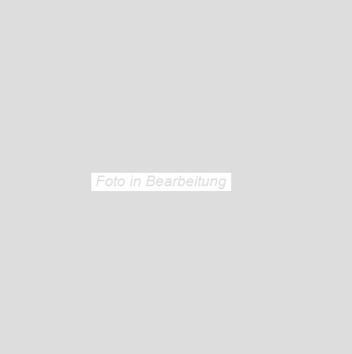 Agrob Buchtal Trias zinkgrau AB-052241 Bodenfliese 60x60 strukturiert R10