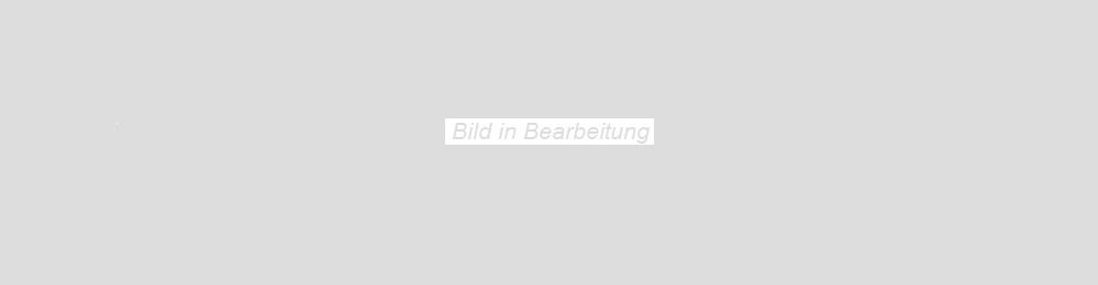 Agrob Buchtal Twin mittelbraun AB-8432-B690HK Bodenfliese 30x90  R9