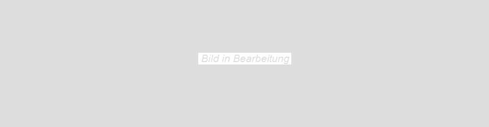 Agrob Buchtal Twin graubraun AB-8431-B690HK Bodenfliese 30x90  R9