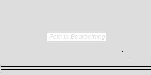 Agrob Buchtal Inside-Out zementgrau AB-433643 Stufe 30x60 eben, vergütet R10/A