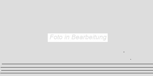 Agrob Buchtal Pizarro schwarz AB-433659 Stufe 30x60 eben, vergütet R10