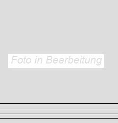 Agrob Buchtal Metry basaltgrau AB-433507 Stufe 30x30 eben, vergütet R10