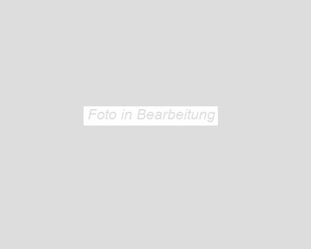 Agrob Buchtal Construct dunkelgrau AB-3091-B740HK Bodenfliese 40x60  R9