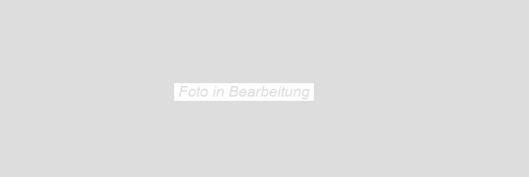 Agrob Buchtal Imago weißbeige AB-392807 Dekorelement 30x90 strukturiert teilpoliert