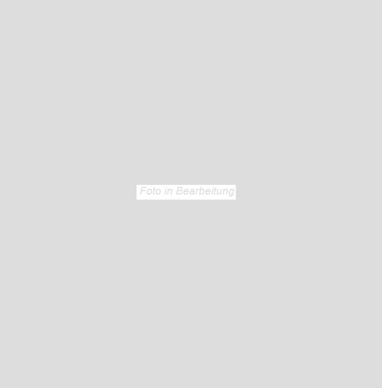 Agrob Buchtal Urban Stone dark grey AB-052011 Bodenfliese 75x75 eben, vergütet R9