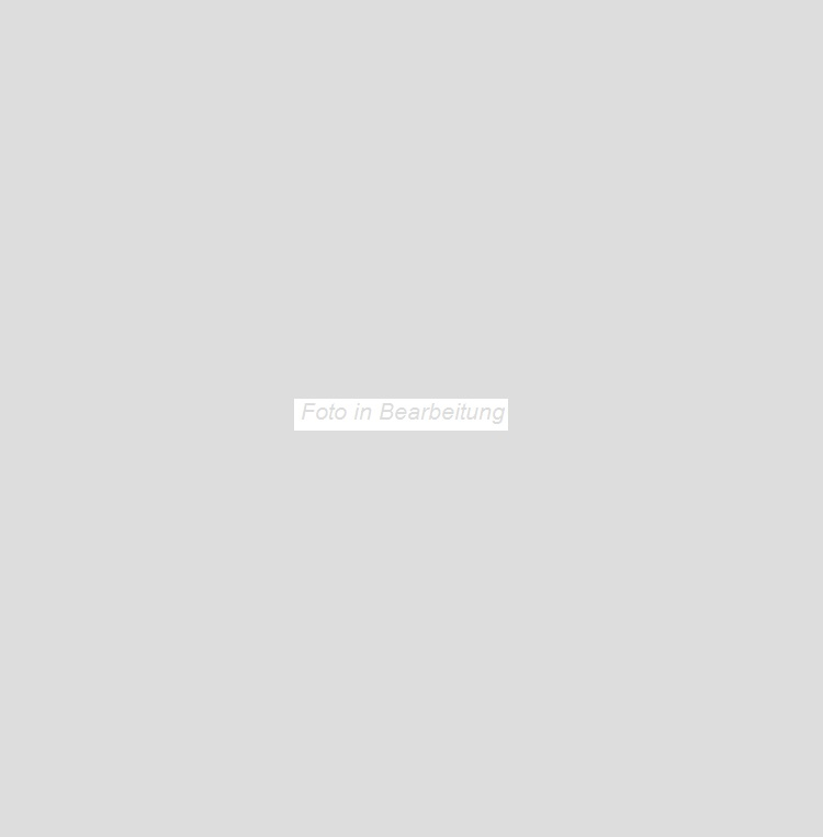 Agrob Buchtal Valley kieselgrau AB-052041 Bodenfliese 75x75 strukturiert, vergütet R11/B