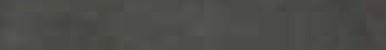 Ariostea Greenstone  Ardesia Antracite ARI-P610390 Bodenfliese 10x60 semi-matt R10