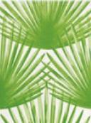 Steuler BONGOBONGO Palmenfächer St-Y34071001 Dekor 25x33 matt