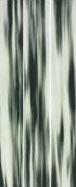 Steuler MONTAGNE Horn St-Y33119001 Dekor 33x80 glänzend