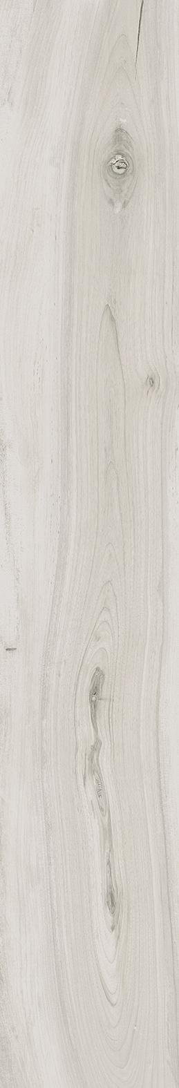 La Fabbrica  Kauri Awanui KAU075071  Boden-/Wandfliese 120x20 Natural