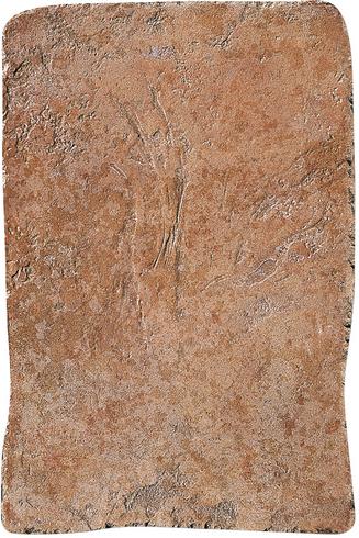Settecento Maya Toulom Granato B68105 Boden-/Wandfliese 49x32,7 Natural