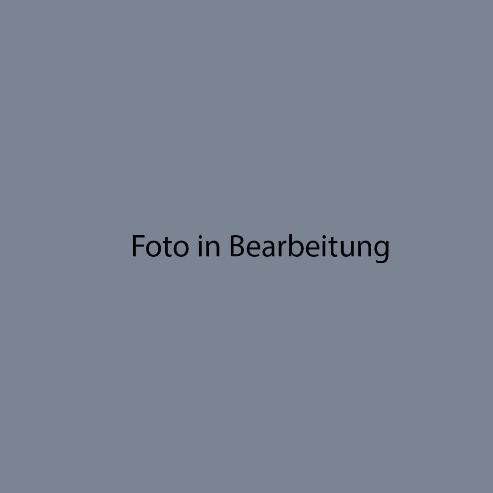 Fondovalle Luserna almond Holzoptik FO-0365LUB600 Sockel 8x60 Natur