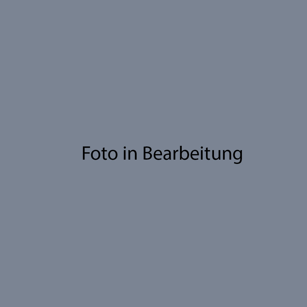 Fondovalle Luserna dark grey Holzoptik FO-0365LUB601 Sockel 8x60 Natur
