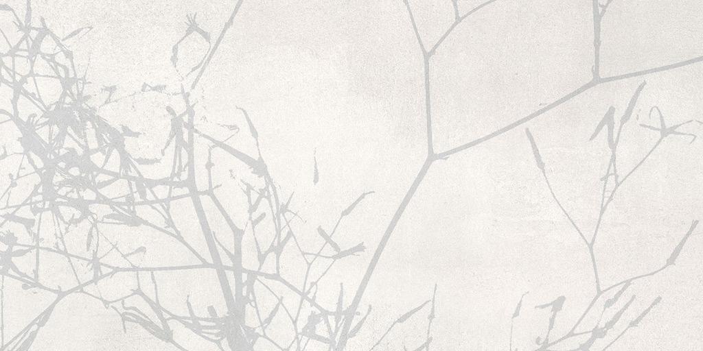 Villeroy und Boch Spotlight light grey 1581 CM61 0 Dekor 30x60 matt