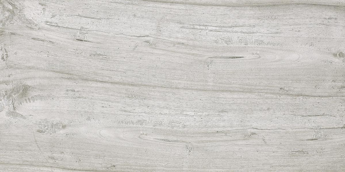 Cinque Brenta Grigio 40x80x2 sosa05 Terrassenplatte Matt
