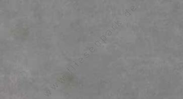 Cinque Sicilia Grey 40x80 Boden-/Wandfliese Matt