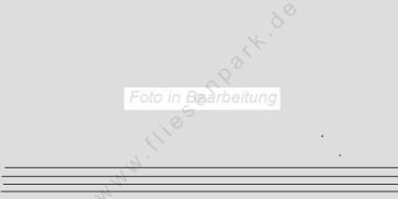 Agrob Buchtal Trias zinkgrau AB-052236 Stufe 30x60 strukturiert R10
