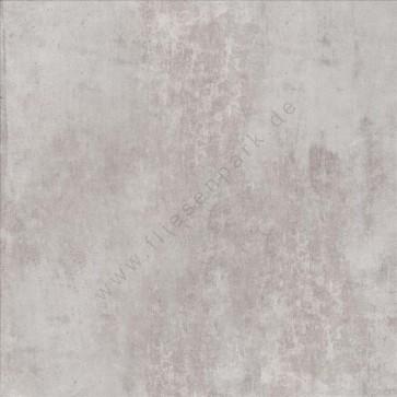 Cinque Basic Line Gris 60x60 Boden-/Wandfliese Matt