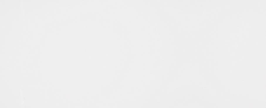 Tau Ceramica Sun white  Wandfliese 25x75 glänzend