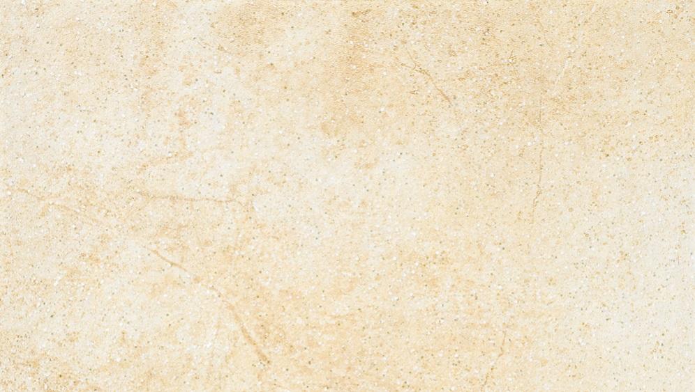 Ströher TERIOTEC X weizenschnee 0183-920 Terrassenplatte 20 80x40 R10/A